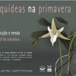 Exposição Orquídeas na Primavera