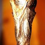 A Taça da Copa do Mundo da FIFA passará pelo Rio em fevereiro