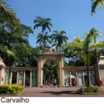 Zôo do Rio oferece colônia de férias com lazer e educação ambiental