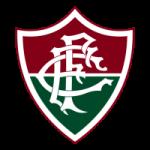 Fluminense Bicampeão Brasileiro