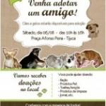 Campanha de Adoção de Cães e Gatos neste sÁbado na Tijuca