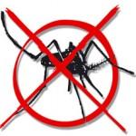 Caminhada Contra a Dengue